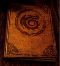 Buch der Drachen.png