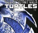 Teenage Mutant Ninja Turtles nr 2 (Mirage)