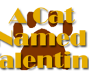 A Cat Named Valentino (TV series)