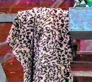 The Leopard Skin Cloak of Annie Oakley