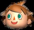 Animal Crossing : Racing Tournament