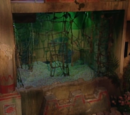 The Swamp (Legends of the Hidden Temple)