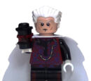 The Collector (minifigure)