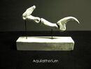 Aquilatherium talon by hyrotrioskjan.jpg