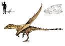 Brutodens inexpectatus by hyrotrioskjan.jpg