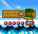 Hidden Island 13