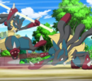 XY031: The Cave of Trials!