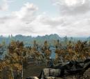 The Rift (Skyrim)