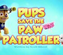 Pups Save the PAW Patroller's Pages