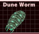 Dune Worm