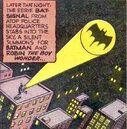 Bat-Signal 08.jpg