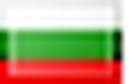 Icon flag bg.png