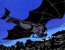 Batman 0628.jpg