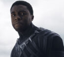 Black Panther/Quote