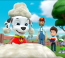 A Pup in Sheep's Clothing/Trivia