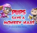 Pups Save a Monkey-naut
