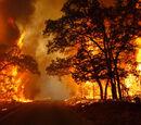 2017 Oklahoma Wildfire