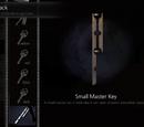 Small Master Key