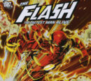 The Flash: Lightning in a Bottle