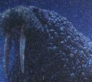 Giant Walrus