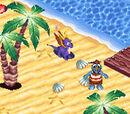 Mermaid Coast