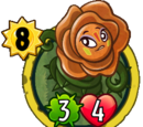 Druid Rose (teammate)