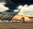 Boeing 737-200 (Dani)