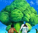 Brokułodrzewo