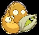Mixed Nuts (PvZ2)