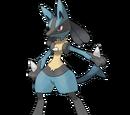 Pokémon in Unova