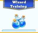 Wizard Training Mini Event
