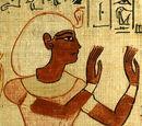 Верховні жерці Амона