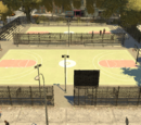 Rubin Swinger Basketball Courts
