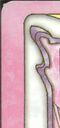 Espejo Sakura (Versión China).jpg
