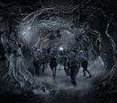 Höhle des Dreiäugigen Raben