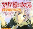Cherry Blossom (Novel)
