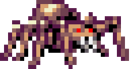 Araignée-naine.png
