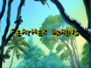 Feather Brains.png