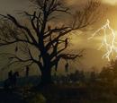 Árvore do Enforcado