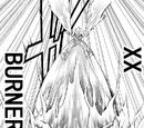 XX-Burner