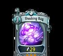 Shocking Bag