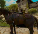 The Witcher 3 images — Horse equipment