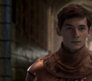 Sir Henry (Wish Realm)
