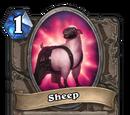 Sheep (Gadgetzan)