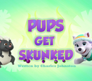 Pups Get Skunked