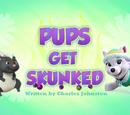 Pups Get Skunked