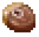 Grid Raw Turtle.png
