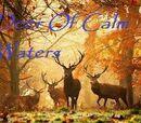Deer Of Calm Waters