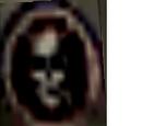 White Skull Brigade