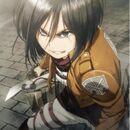 Mikasa Cruel World.jpg